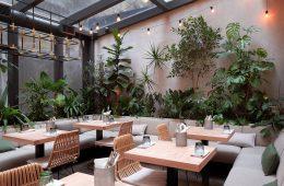 thiết kế quán cafe sân vườn trong nhà